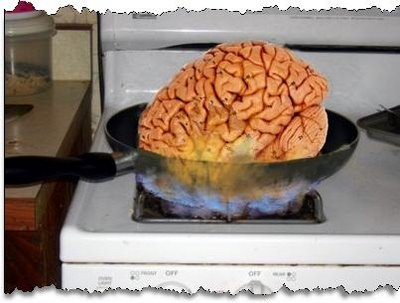 Thats my brain (only it's not that big)