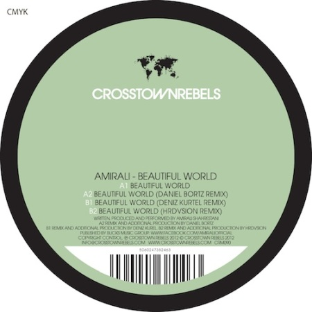 Amirali - Beautiful World